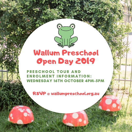 Wallum Preschool Open Day 2019 (1).png
