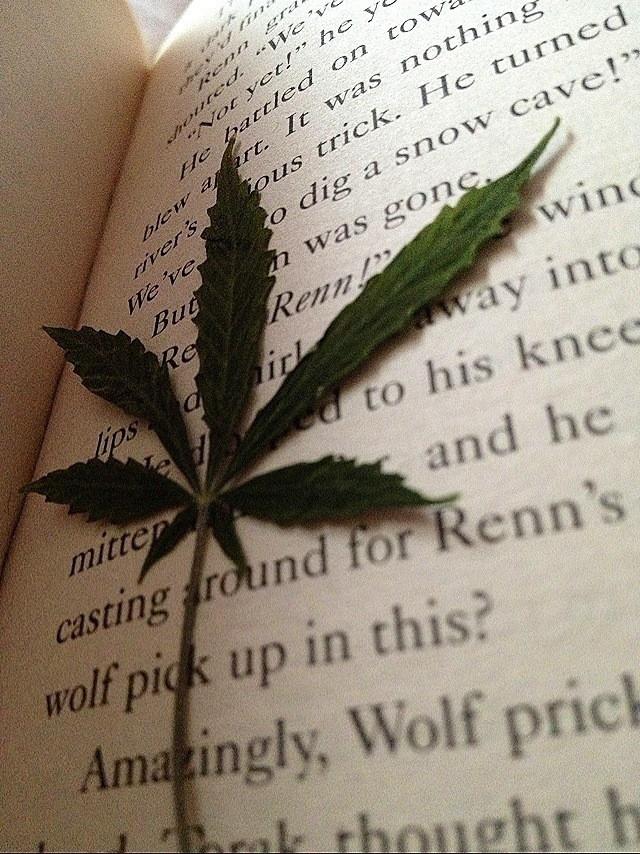 "Episode 14: ""Do Ya Love Me Mary Jane""- A Conversation About Marijuana and Society"