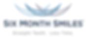 6MS logo.png