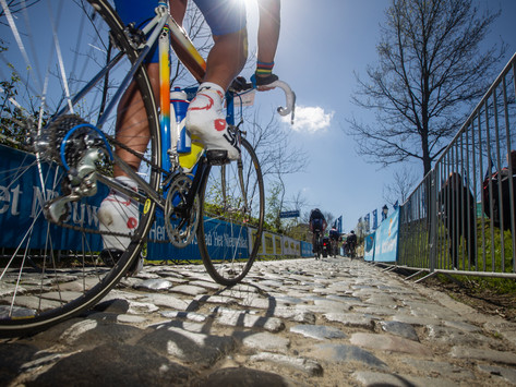 Cobbles and Climbs of theTour of Flanders
