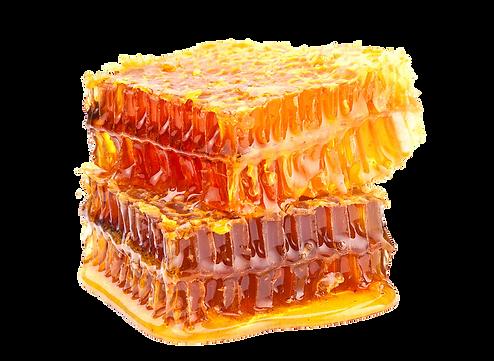 bee-honeycomb-royal-jelly-comb-honey-hon