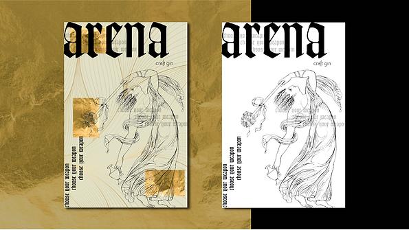 arena-03.png
