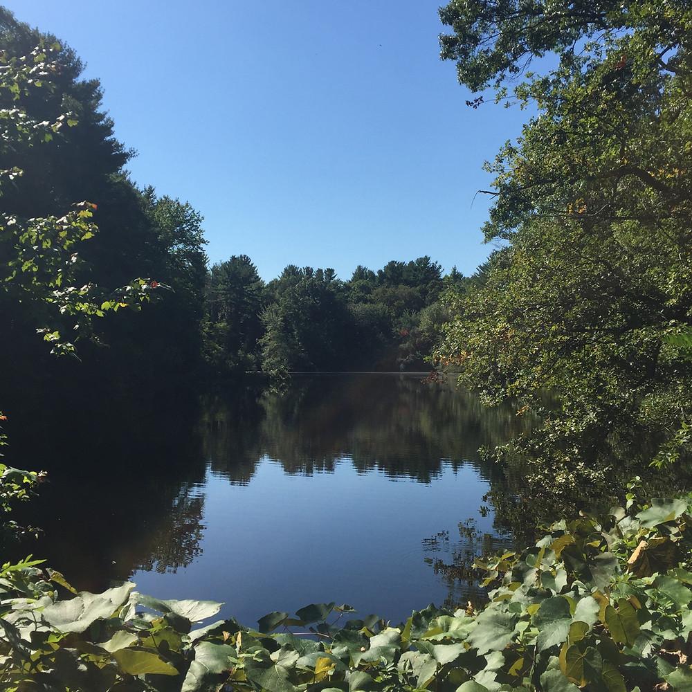 Goddard Park pond