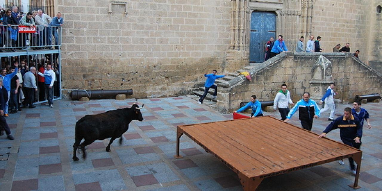 san sebastian bull running javea