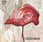 Groove Box.png