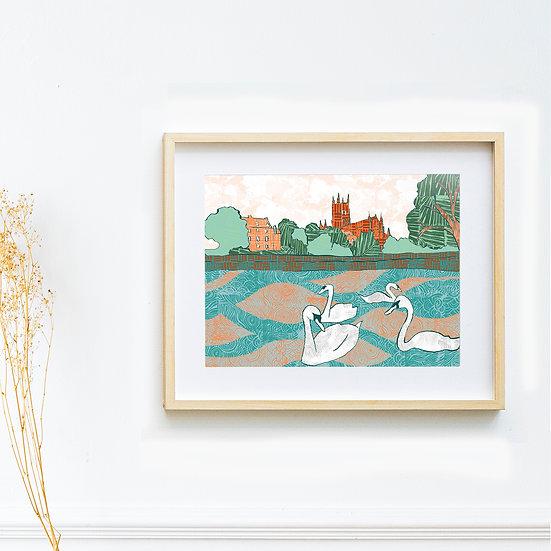 Art Print - Worcester Swans