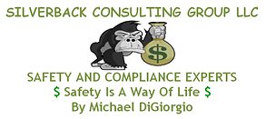 silverback consulting logo.png