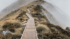 Hiking the Kepler Track