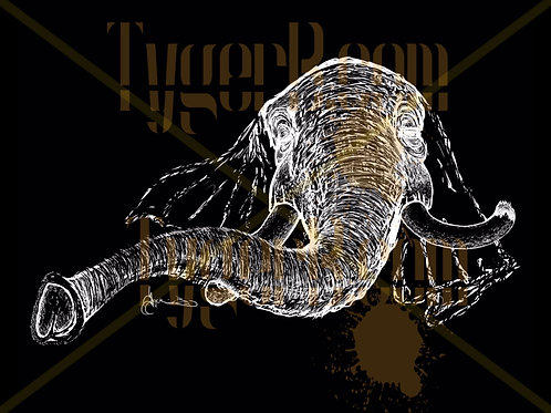 """Long Trunk"" (Black BG) ©TBM2019 TygerB.com"