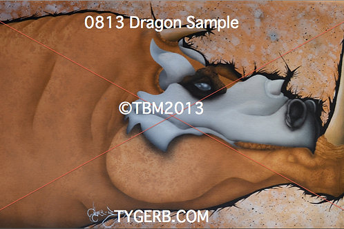 """0813 Dragon"" TygerB.com TBM2013"