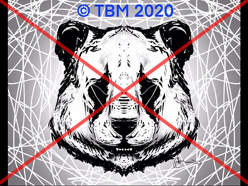 """Panda Jokes"" ©TBM2020 TygerB.com"