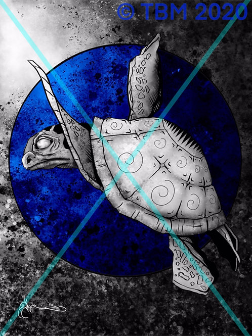 """Turtle Heights"" ©TBM2020 TygerB.com"