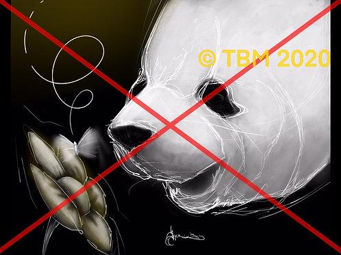 """Panda Flower"" ©TBM2020 TygerB.com"