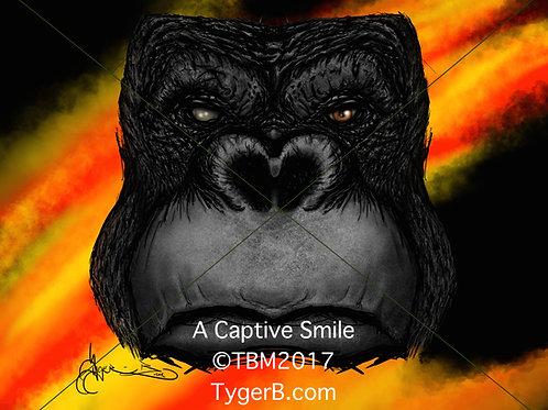 A Captive Smile ©TBM2017 TygerB.com