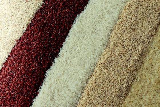 Rice-400x267.jpg