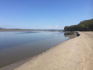Beach view (1).jpg