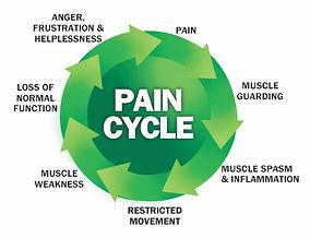 chronic pain Fig 3 [12].jpg