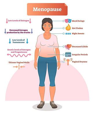 Menopause Fig 1 [6].PNG.jpg
