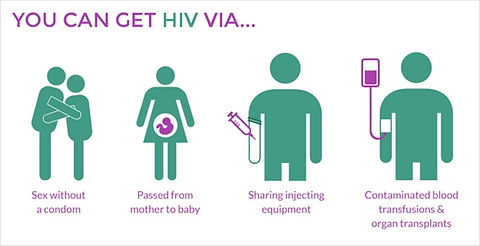 HIV fig 1  [7].jpg