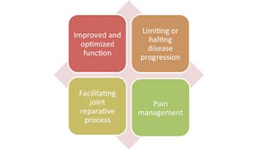 arthritis Fig 2 [5].PNG