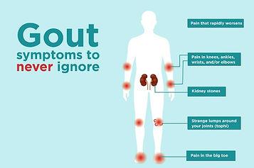 Gout Fig 2 [6].jpg