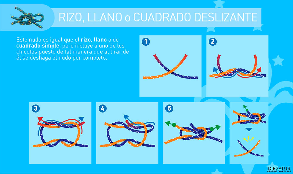 guiaNudo_rizoDes.jpg