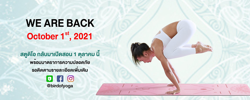Banner_Bird of Yoga_Yoga Studio_Bangkok.jpg