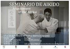 Seminario Internazionale di Aikido con Luis Mochòn Sensei organizzato dal Musubi Aikido Italia
