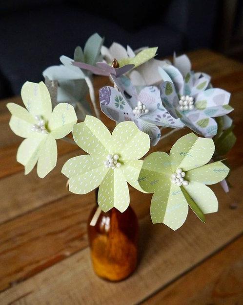 Bouquet fleurs de cerisiers - Anis