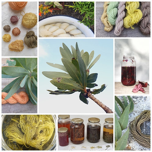 .Saturday 27th March. 'To Dye For' and ONLINE workshop .dyeing wool naturally.