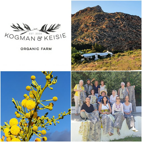 .MARCH 2nd+3rd+4th. A Botanical Printing weekend  in Montagu.
