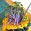 Thumbnail: Purple Kohlrabi