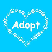 71131264-dog-paw-heart-adopt.jpg
