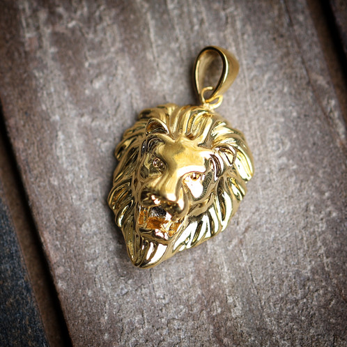 18k gold lion pendant mens hip hop jewelry pendants chains 18k gold lion pendant aloadofball Choice Image