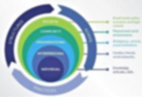 socio ecological model.jpg