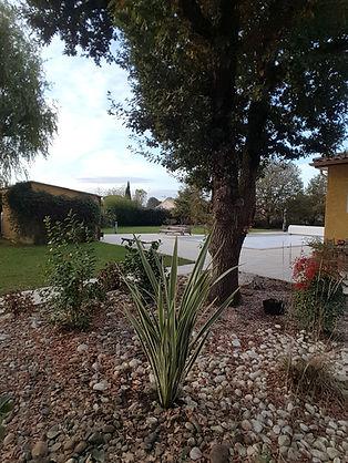 Plantation_d'Arbustes_dans_Rocaille_à_Sa