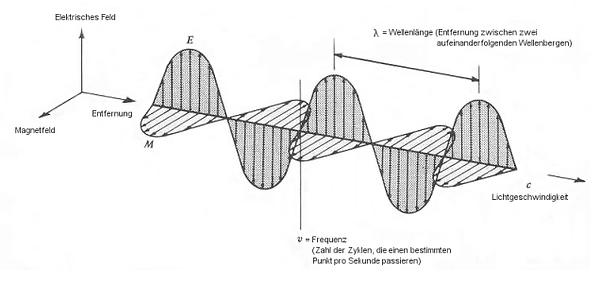 hf-amp-01.png