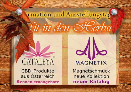 Cataleya & Magnetix