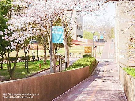 春めく道_クレジット付きs.jpg