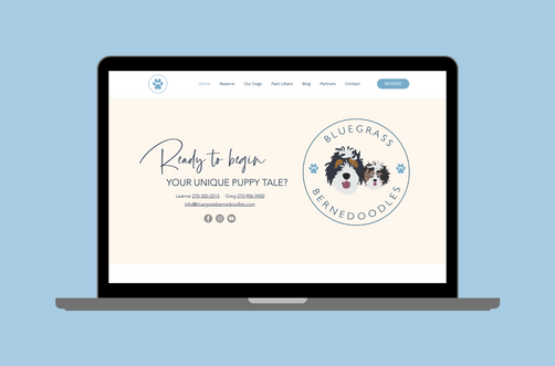 Create and Collab Web Design Project for Bluegrass Bernedoodles