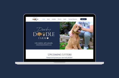 Create and Collab Web Design Project for Derby Doodle Farm