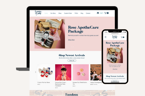 Create and Collab Web Design Project for Lantz and Lady