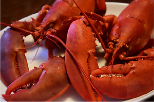 New-Hampshire-Lobsters-Fresh-and-Local.p