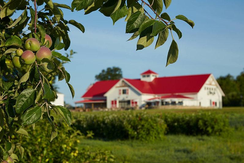 apple-creat-farm-nh.jpg