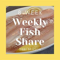 8 Week Fish Share