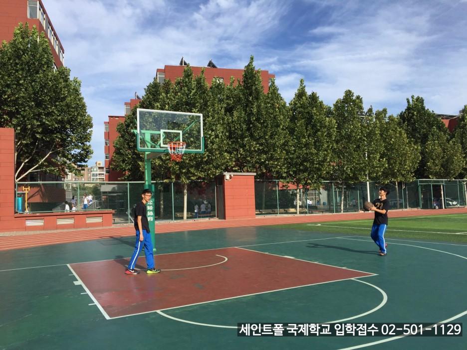 운동장 농구코트