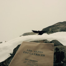 Les Alpes Éducatrices Un livre ancien de Jules Payot