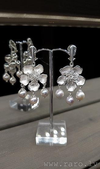 Sudraba auskari klipši ar lavandas krāsas pērlēm