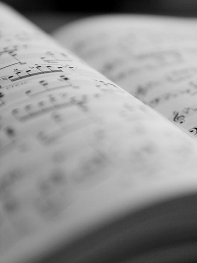 Scoring the Screen: Learning the Vocabulary