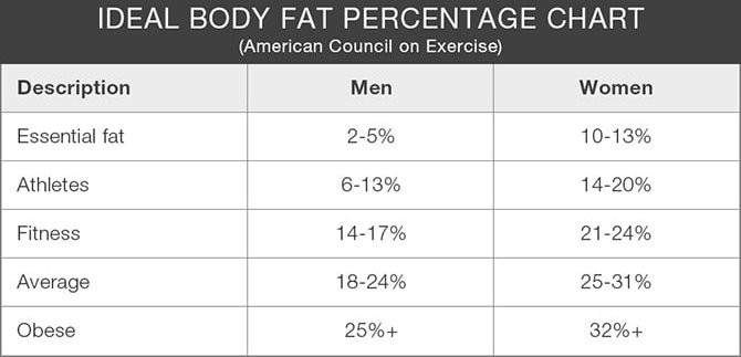 What body fat percentage should you be? Octavia Activewear